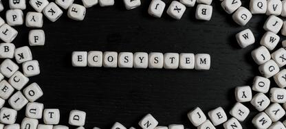 Ecosystem is more than just a buzzword