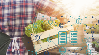 Walmart is mandating that their produce suppliers adopt blockchain technologies by January 31, 2019