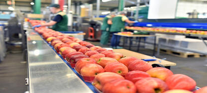 Food Manufacturer Manages Demand Shock